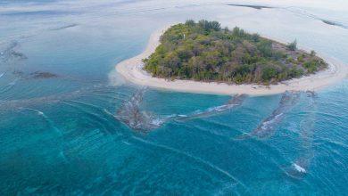 Pulau Bongkil
