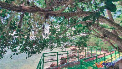 Foto Jembatan Batu Pinagut