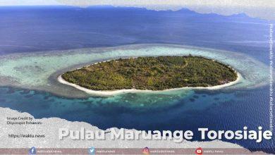 Pulau Maruange Torosiaje