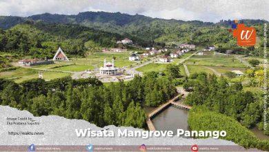 Wisata Mangrove Panango