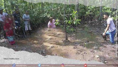Penemuan Mayat Di Hutan Bakau